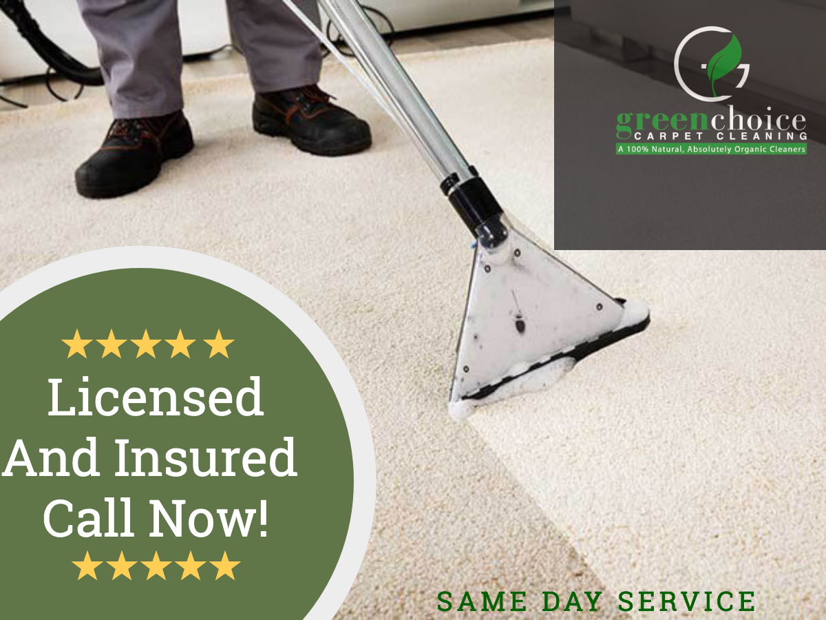 Our Professional Carpet Cleaning