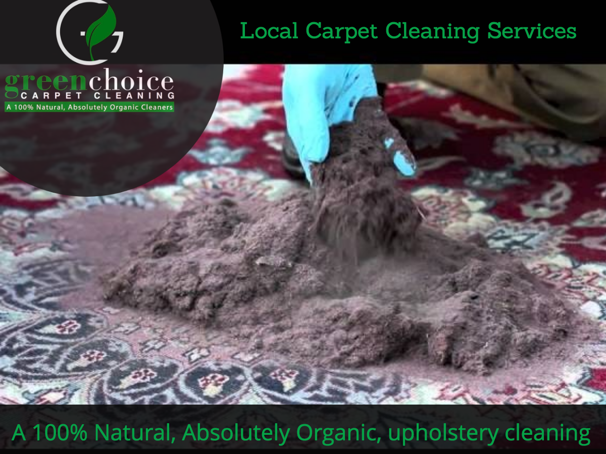 GREEN CARPET CLEANERS NYC