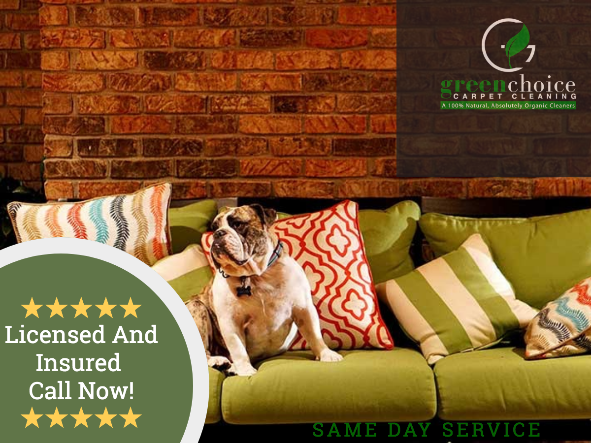 Upholstery Cleaning Company NYC