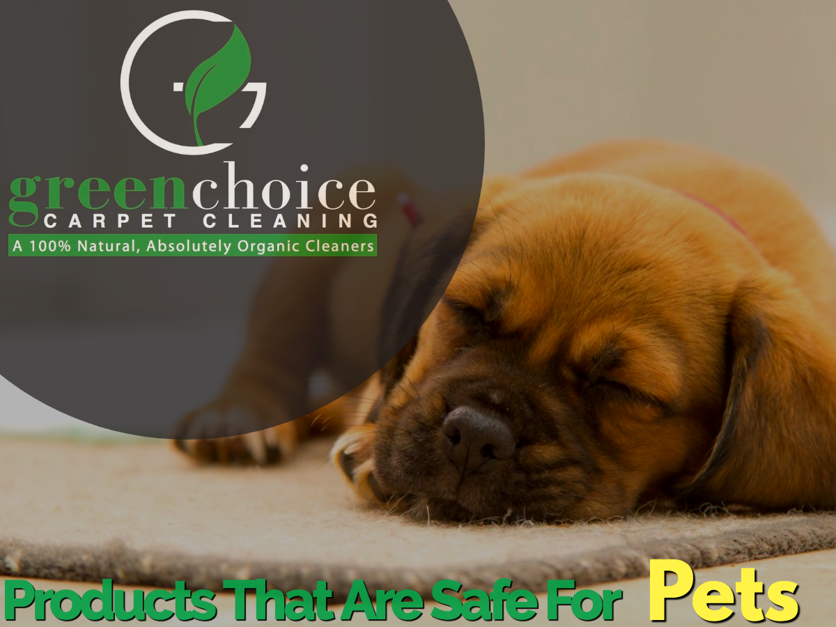 Our Product Is 100% Organic Dog Safe Pet Safe In NYC