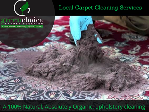 Local Carpet CLEANERS queens