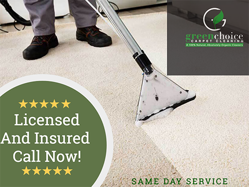 professional queens carpet cleaner NY