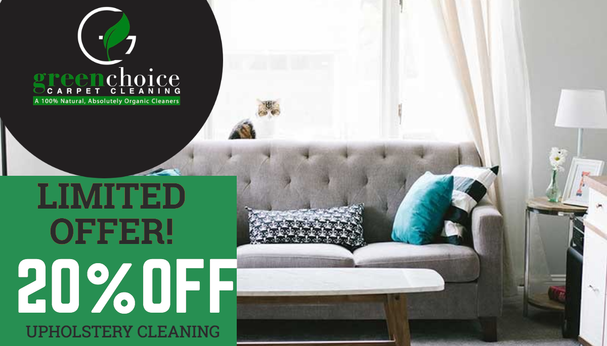 upholstery cleaning specials in queens NYC
